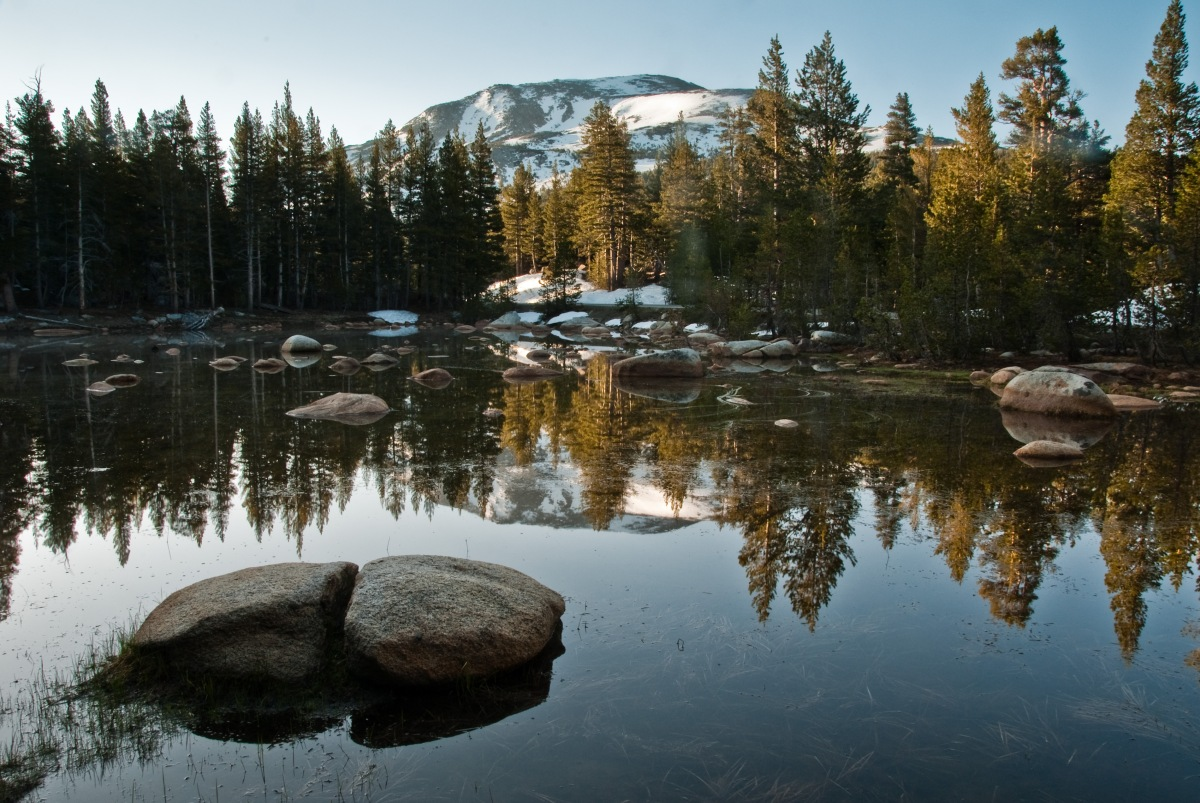 Picture Pick FriYAY: Tuolumne Meadows,Ca