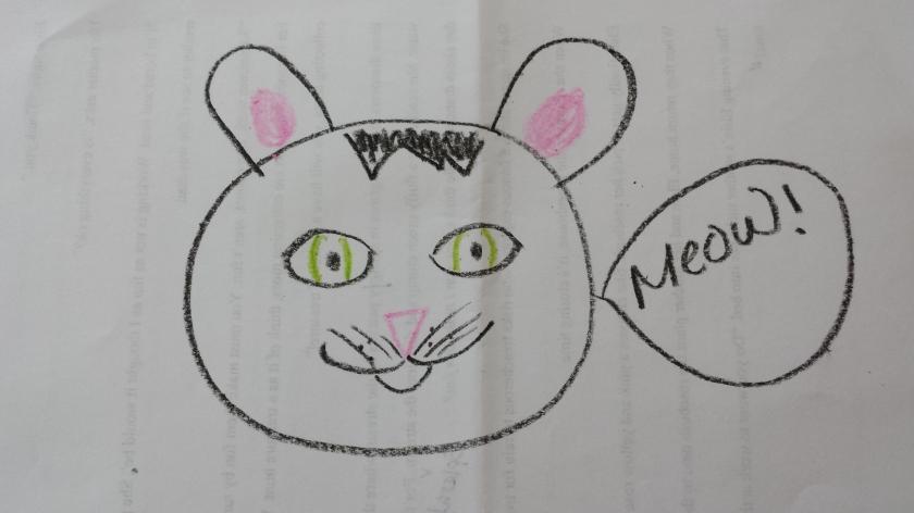 cat-drawing