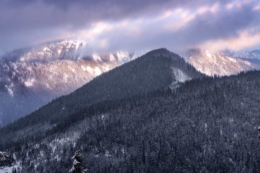 Skyline Ridge Washington State